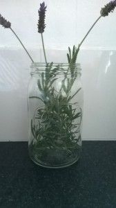 Agee jar with lavender from the garden