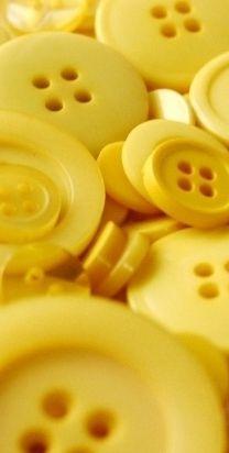 Gelbe Knöpfe #goldentoast