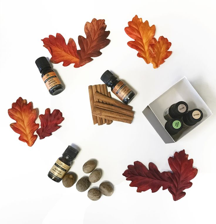 Fall in love with 65% off ALL essential oil single notes and blends! Essential oil sets are excluded. Use discount code: EO65 in shopping cart. Sale ends 10/5/17. Shop now: https://www.plantlife.net/essential-oil-sale