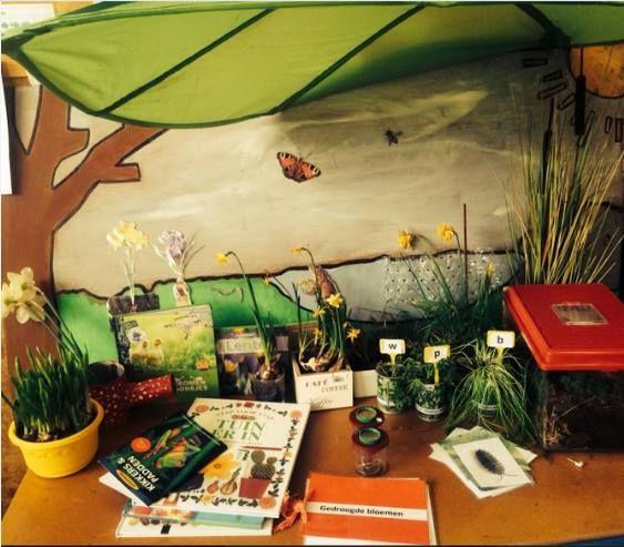 Ontdekhoek thema tuin: - Op de grote plaat kwam elke dag iets bij wat de kinderen bijleerden (krokus, narcis, kikker, kikkerdril, vlinder...) - De kleuters brachten spontaan narcissen en krokussen mee van thuis. - Een bak met kriebelbeestjes en bijhorende foto's - Looppotjes (Hema) - Informatieve boeken - Boek met gedroogde bloemen - 3 verschillende soorten kruiden (waterkers, bieslook en peterselie)