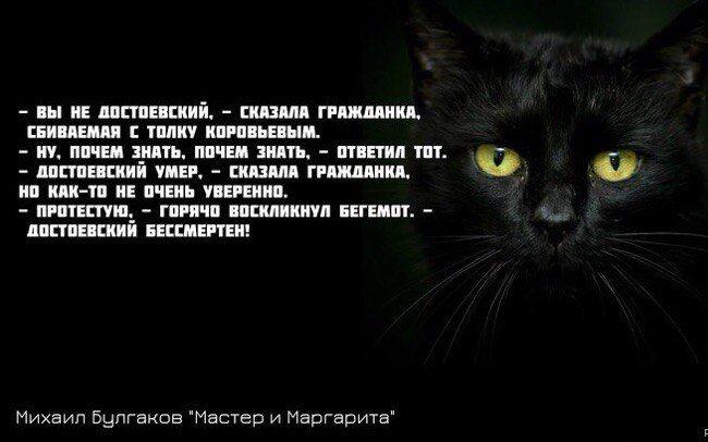 """""""Достоевский бессмертен!"""""""