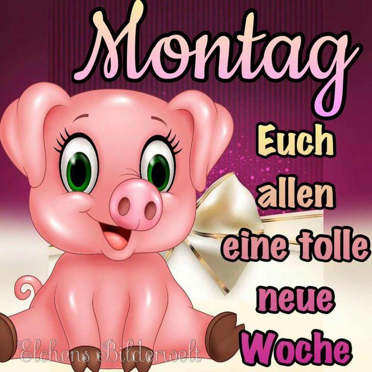 Schöne Montag