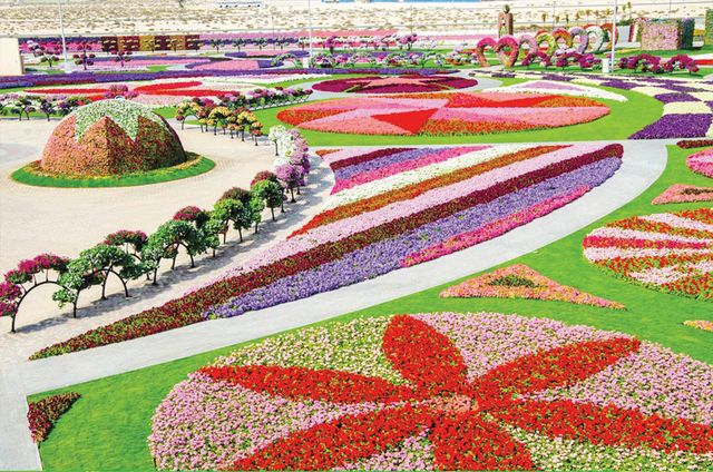 حديقة الزهور بدبي Miracle Garden Amazing Gardens Beautiful Gardens