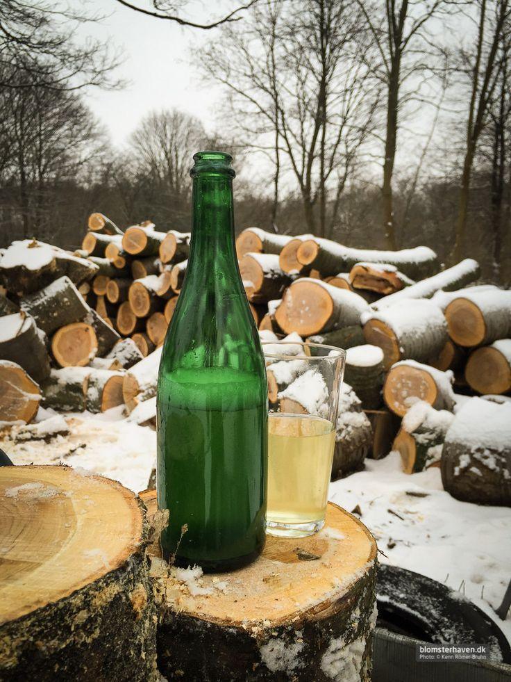 I still love homemade elderflower champagne ...