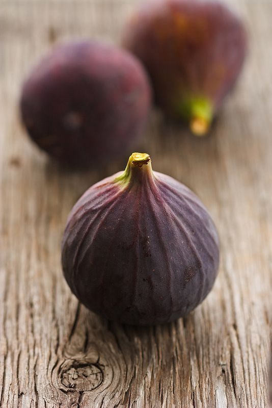 We can afford to eat healthy, fresh, free range organic food