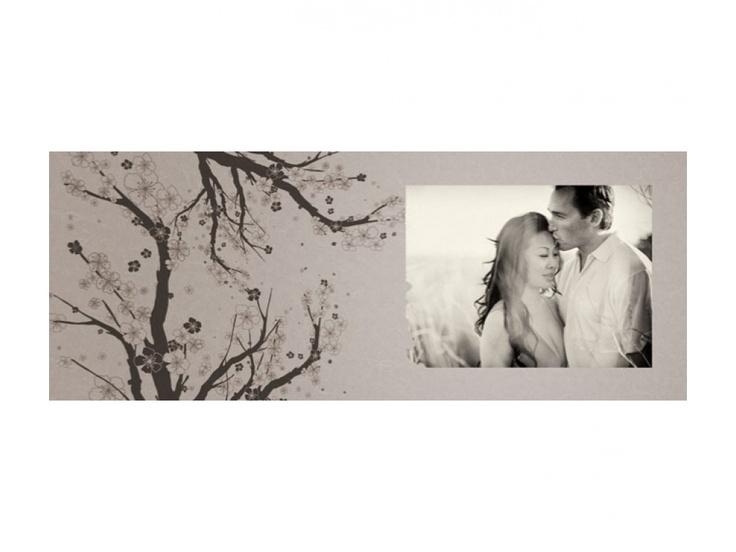 Cherry Branch Design (album) - The Shoppe $60