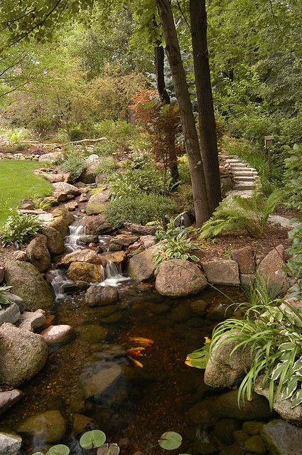 gorgeous water fall and pond
