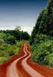 Camino MISIONES  (Argentina)