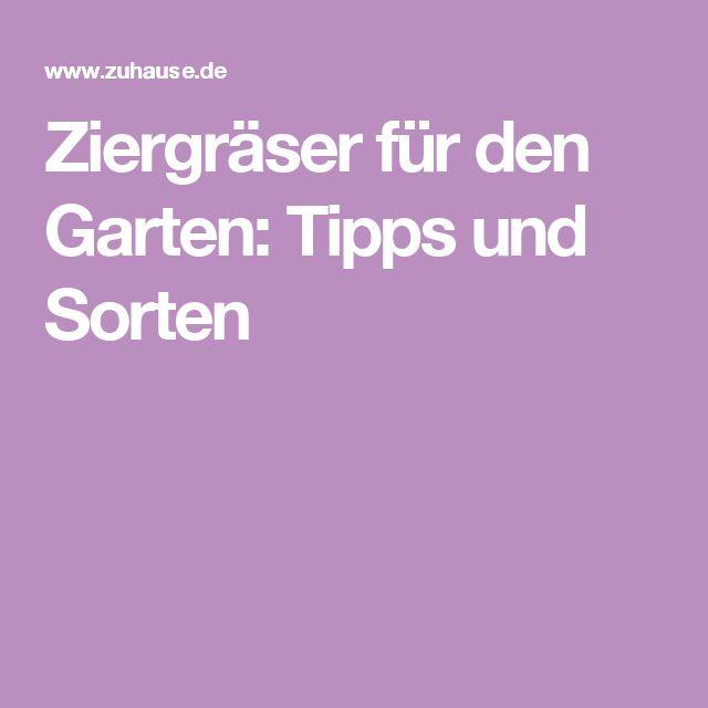 Ziergräser für den Garten: Tipps und Sorten