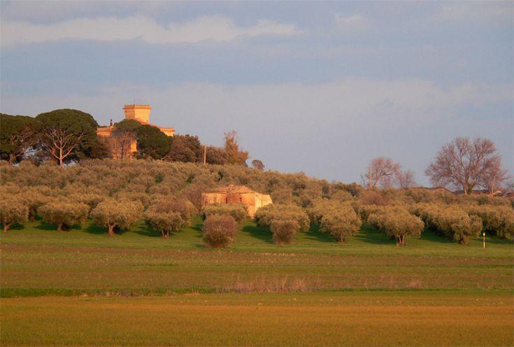 Torremaggiore, Foggia Puglia Italy