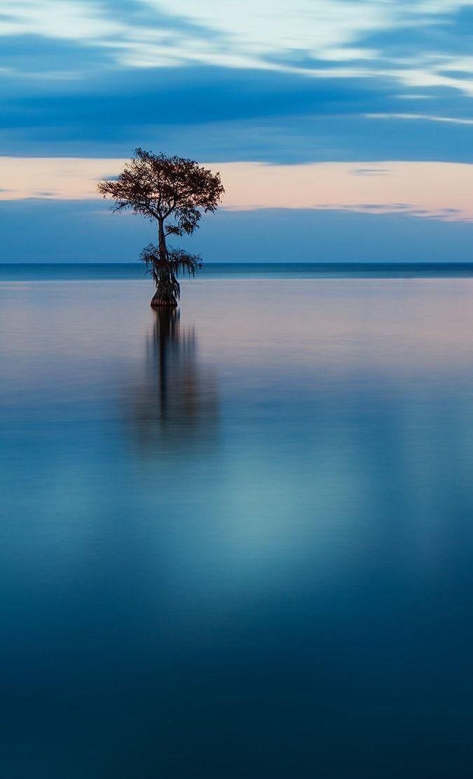 Silence of solitude by Travis Rhoads