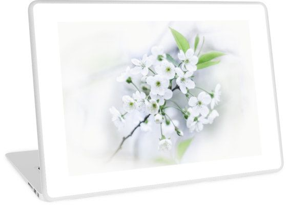 White cherry blossoms. photo, photography, artwork, buy, sale, gift ideas, redbubble, cherry, cherry blossoms, freshness, green leaves, spring flowers, spring trees, tenderness, white flowers, white petals, young, springtime, spring, apple, laptop, pc, macbook, case, cover, gadgets, skin