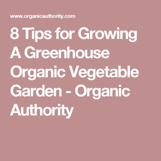 8 Tips for Growing A Greenhouse Organic Vegetable Garden - Organic Authority