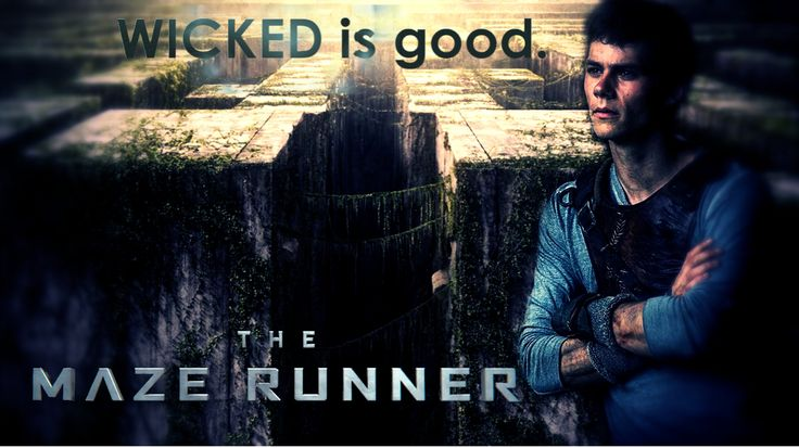 the maze runner | The Maze Runner Film The Maze Runner