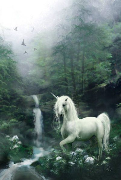 Unicorns are great beings I hear... I've not yet met one but I am sure the time will come sooner or later...