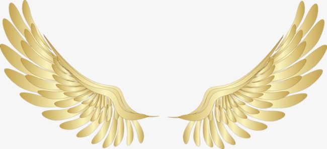 Gold Wings Wings Clipart Wing Feather Png And Vector With Transparent Background For Free Download Angel Wings Png Wings Png Golden Wings