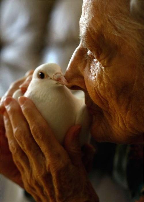 Kindness >>>>>>>>