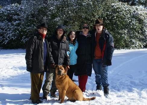 Os envío una foto de mi perro: Yibac, este nombre resume lo que significa para nosotros, tiene las iniciales de los 5 miembros de la familia. Es una mezcla de dogo y chow-chow y llegó a nuestas vidas hace ya casi 7 años...
