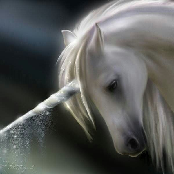 Unicorns would be one of the creatures I would have in my field, they are mystical and majestical, serene, calming and comforting...