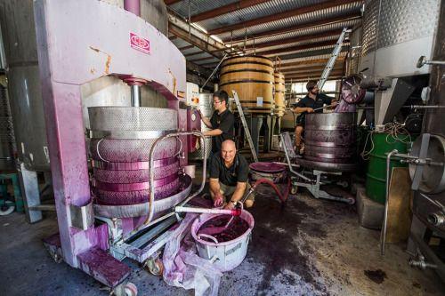 One of Mudgee's best winemakers....
