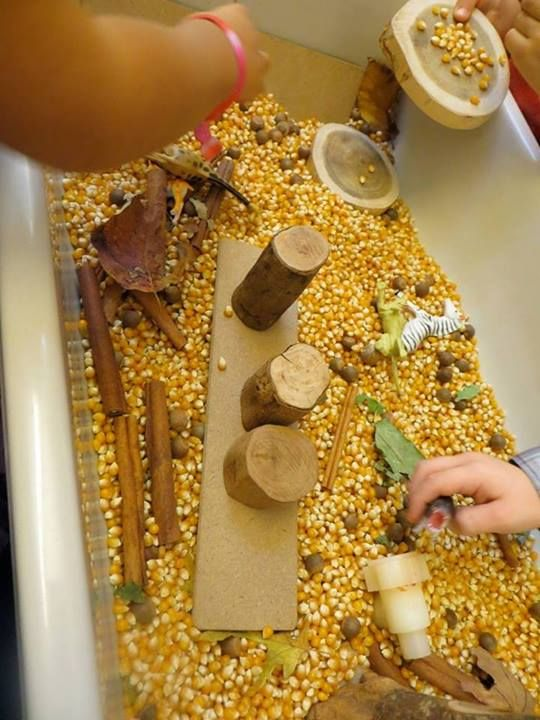 "Autumn Inspiration from Rachel Waxman... popcorn kernals in the sensory tub, photo shared by Interaction Imagination ("",)"