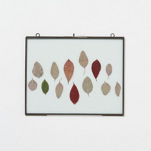 TERRAIN GIFT PICK The Botanical Frames #terraingiftsandgreens #shopterrain
