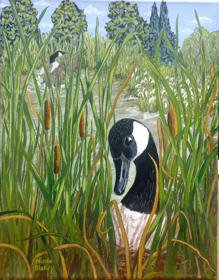 """""""Nesting Goose"""" painted in acrylic on canvas."""