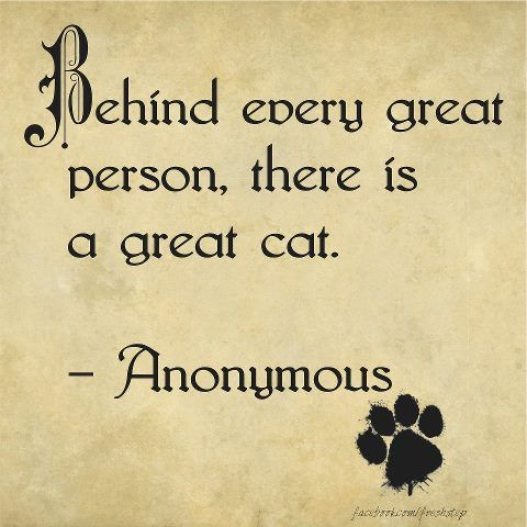 Behind every great person, there is a great cat. True story.