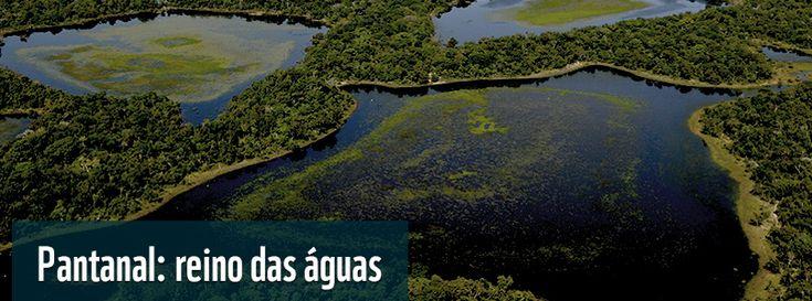 """Também chamado de """"reino das águas"""", o bioma é detentor de uma das maiores áreas úmidas continentais do planeta. Possui uma área de 624.320 km², aproximadamente 62% no Brasil, nos estados do Mato Grosso e Mato Grosso do Sul; 20% na Bolívia, no estado de Santa Cruz e 18% no Paraguai, nos estados do Alto Paraguai, Boqueron e Presidente Hayes."""