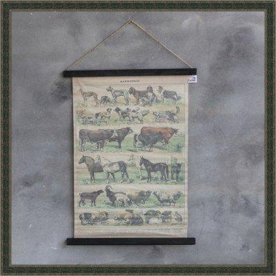 Schoolkaart boerderijdieren