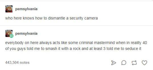 I'll Warn You, These Tumblr Posts Are Weird, But They're Hilarious