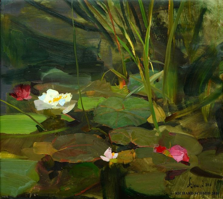 Richard Schmid Water Lilies Gallery 1261 In 2019 Lily