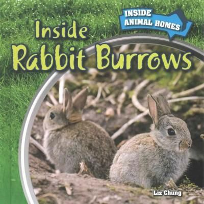 Inside Rabbit Burrows