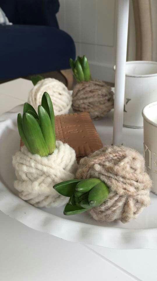 Voorjaarsbolletjes met wol omwikkeld