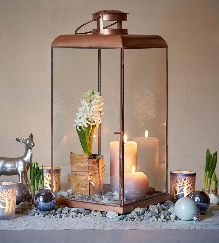 "www/botanic.com/noel/deco - Inspiration ""Jardin enneigé"" - Lanterne shine - Réf. 247126"