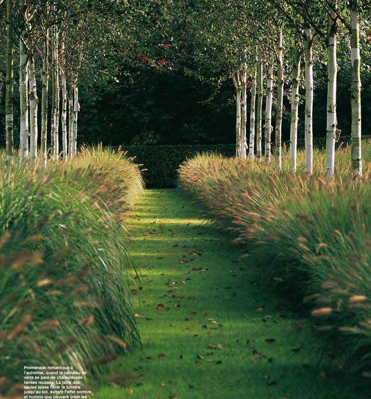 Garden by Piet Blanckaert landscape architect / repinned on toby designs