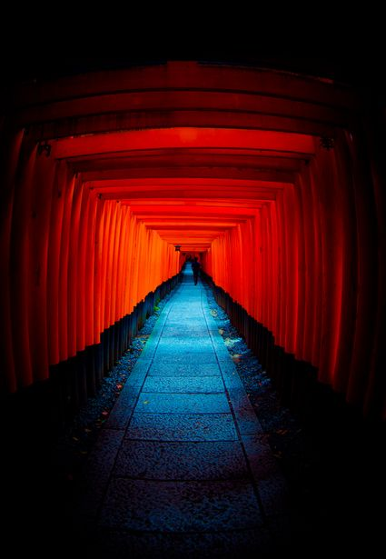 Torii gate of Fushimi Inari shrine, Kyoto, Japan 悪の国