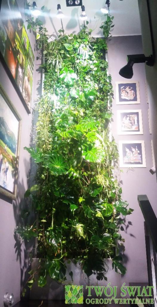 #verticalgarden