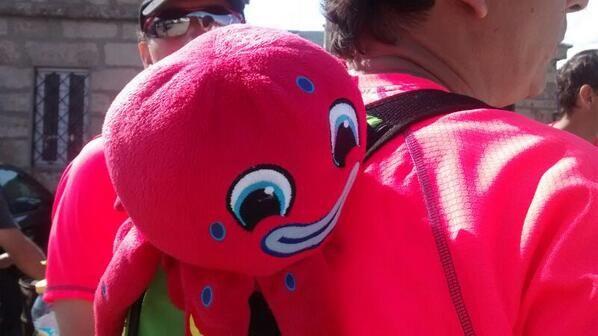 El equipo Octupus M9 camina con su mascota!  ¿Q tal vais Alonso, Luis, Emilio, José,  Laura y Cristina? #OITW