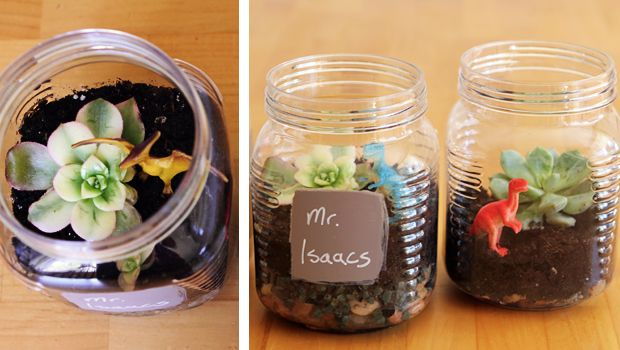 Mini terrarium à fabriquer en famille. Une première plante à entretenir! Et ça fait de beaux cadeaux à offrir aux gens qu'ils aiment.