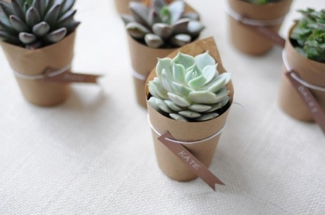 Succulents with name placards, doubling as favors!  Gotta bring some phx desert love to CA.