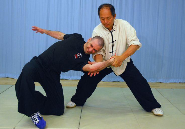 Tai Chi Fighting! Taijiquan Martial Applications (Yang-style 37-postures...