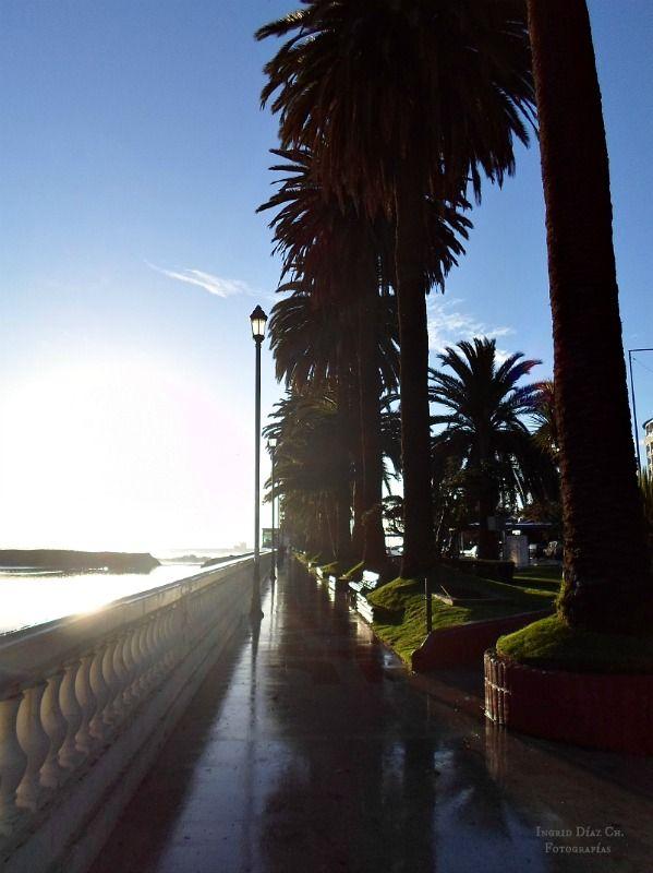 Avenida Perú en 1 Norte, Viña del Mar