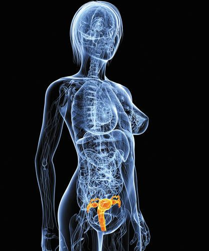 Prevenir el cáncer del cuello uterino - Cuerpo y Mente