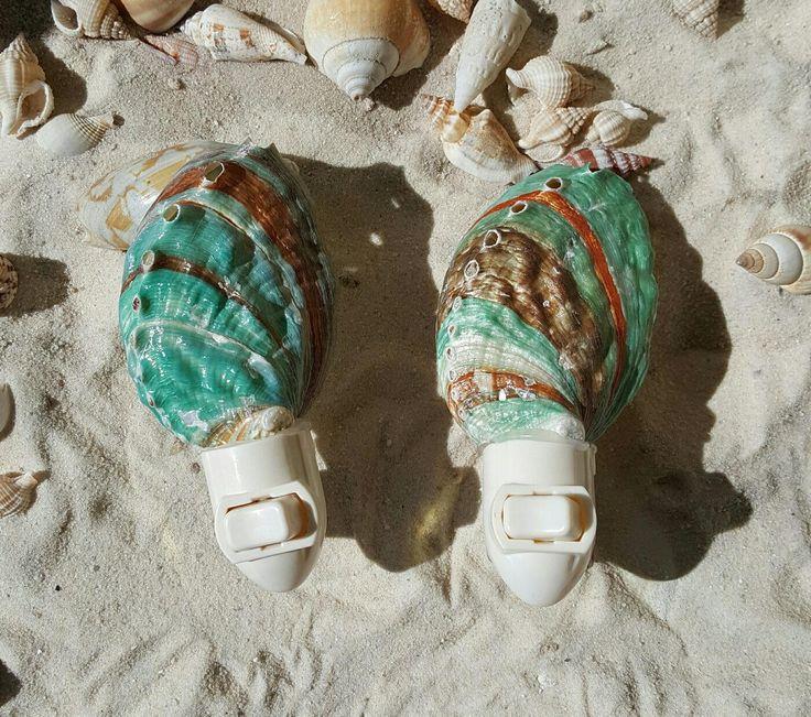 Shell Night Light, Abalone Shell Night Light, Natural Shell Night Light by BeachHomeDecor on Etsy