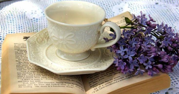 Πασχαλιές Τσάι Λιλά φλυτζάνι τσαγιού Νεκρή Υπέροχη Ζωή Κύπελλο Βιβλίο λουλούδι Hd Wallpaper