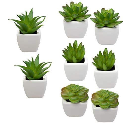 Home Trends Set Of 8 Green Succulents Artificial Mini Succulent Plants Faux Succulents Potted I In 2020 Fake Succulent Plants Fake Plants Decor Mini Succulent Plants