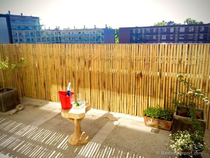brise vue balcon truffaut cheap vido quelles plantes pour une jardinire duautomne et duhiver. Black Bedroom Furniture Sets. Home Design Ideas