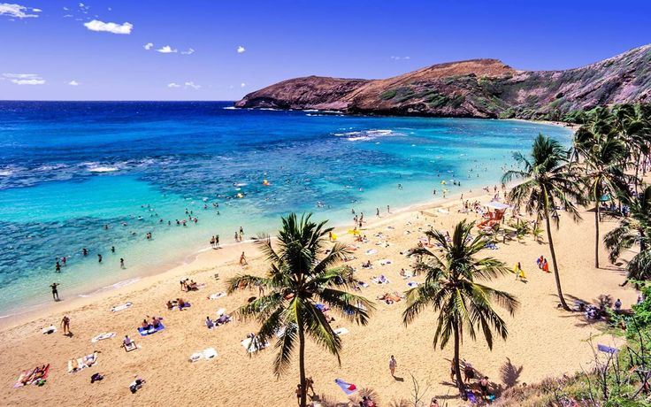Those Cheap Flights to Hawaii Are Finally Here | With cheap flights available from Hawaiian Airlines, United Airlines, Alaska Airlines, and Delta, it looks like an all-out airfare war has started. And flights to Hawaii are on-sale now for only $344 round-trip. #cheapestflights #cheapflights