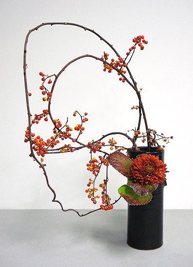 Ikebana By Sima. Using Vinus